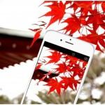 スマホのカメラで紅葉を撮るための基本知識