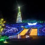 クリスマスイルミネーションで東京近郊の穴場スポットは?
